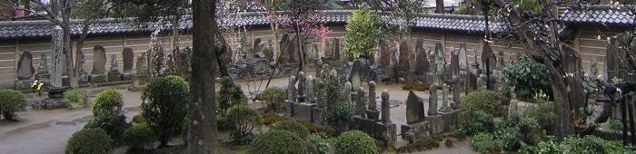"""casa asia presenta  """"sakura"""", un diccionario de la cultura japonesa"""
