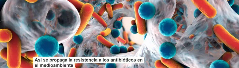 así se propaga la resistencia a los antibióticos en elmedioambiente