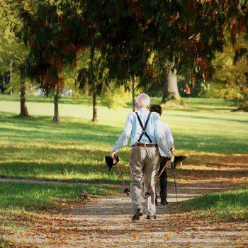 la actividad física puede atenuar un 36% el riesgo de mortalidad entre las personas de mas de 60 años