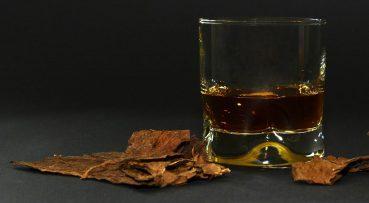 daño cerebral inducido por el alcohol