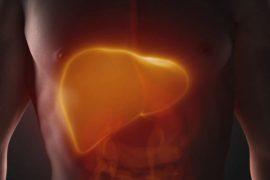 identificación de una nueva diana terapéutica contra el cáncer de hígado