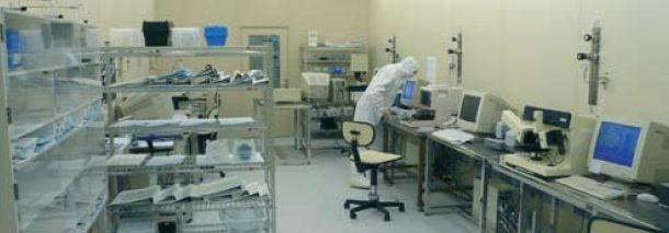 Observar el corazón de las biomoléculas