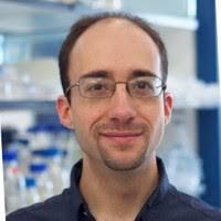 'Jaulas' moleculares para destruir células cancerosas