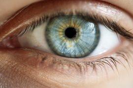 ucm ,qué zonas de la retina cambian con alzhéimer leve