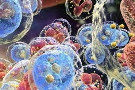 diana terapéutica para el tratamiento de la leucemia