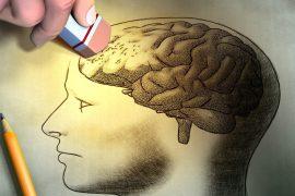 logran observar cómo se estructura el alzheimer