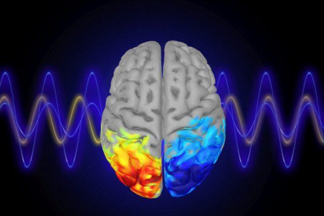 Controlando la atención con ondas cerebrales