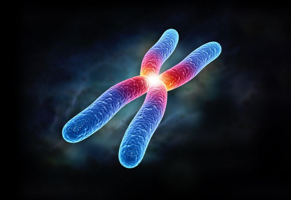 telomeros_Tratamiento fibrosis