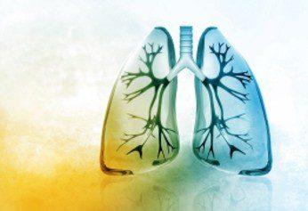 stanford- la inmunoterapia muestra potencial en el tratamiento de la fibrosis pulmonar