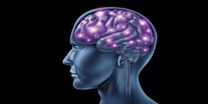 Metástasis Cerebral