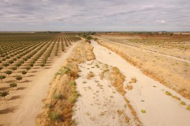 recuperación de comunidades naturales y la producción agrícola.
