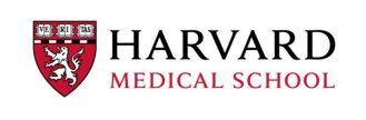 harvard, una interacción covid-19 / cáncer