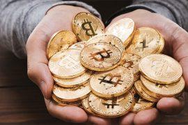 expansión el bitcoin es un activo refugio o un caballo salvaje
