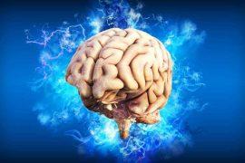 tendencias 21 el cerebro juega con nuestros recuerdos