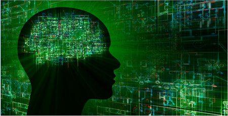 un código binario gestiona la memoria en el cerebro