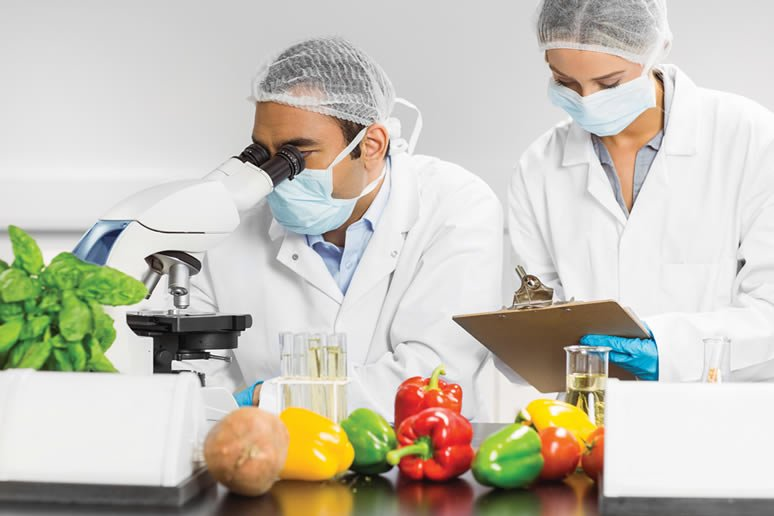 Centro de innovacion tecnologica Industria alimentaria