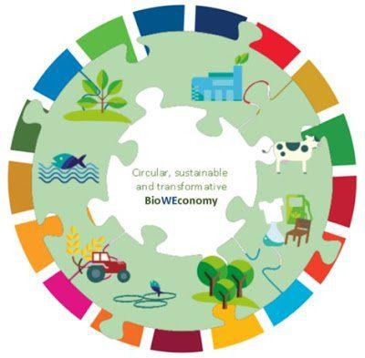 La Red de Expertos en Bioeconomia pide una transicion mas audaz hacia una BioWEconomia circular sostenible y transformadora