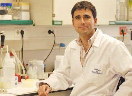 Javier Saez Valero