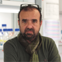 Alberto Pendas