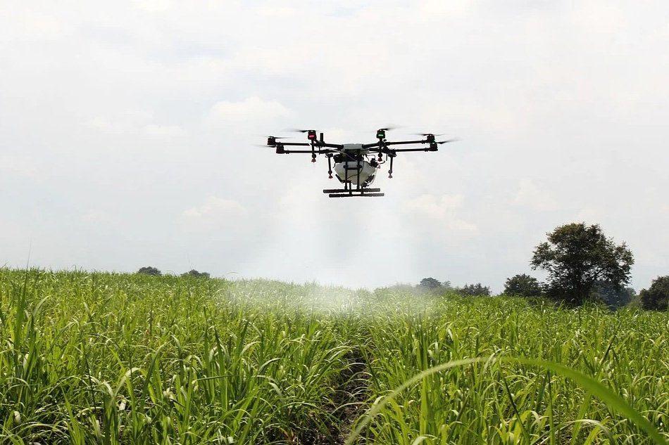 Los desafios invisibles de una agricultura verde en Europa4