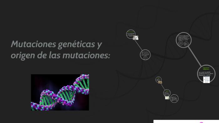 Origenes de la mutacion revela variaciones geneticas1
