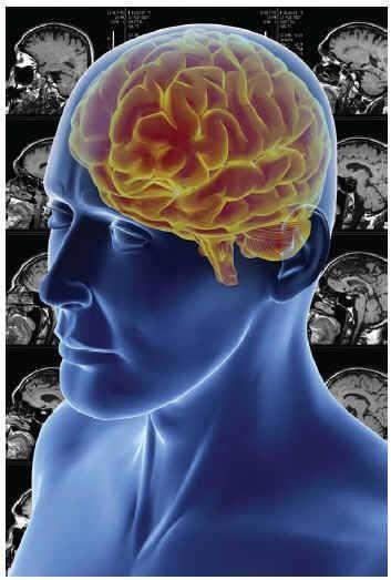 Entender el cerebro para apaliar sus enfermedades3