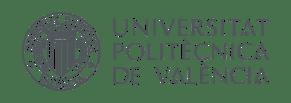 Logo UPV principal color300