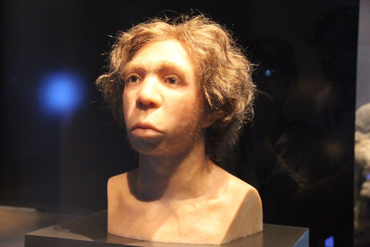 DNA de neandertais estava presente em povos antigos da África - Planeta