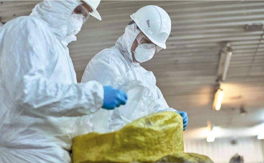 Agentes biológicos en el entorno laboral-1