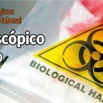 Agentes biológicos en el entorno laboral