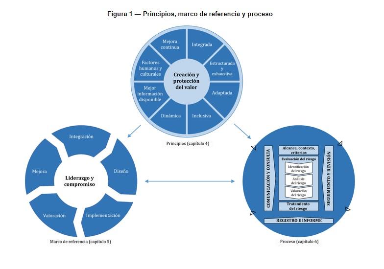 Figura 1: Principios, marco de referencia y proceso