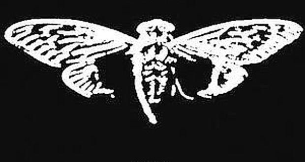 Cicada 3301: El enigma de Internet