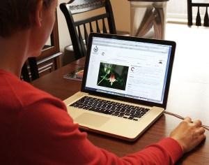 El 50% de los usuarios realizará una compra online en los próximos seis meses a nivel global