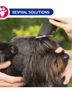 Dog also pet grooming clipper blade chart size and use rh revivalanimal