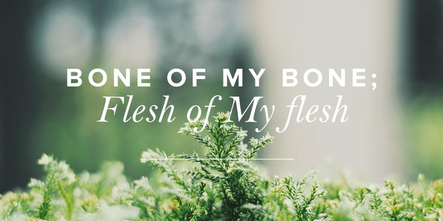 Bone of My Bone Flesh of My Flesh  True Woman Blog  Revive Our Hearts