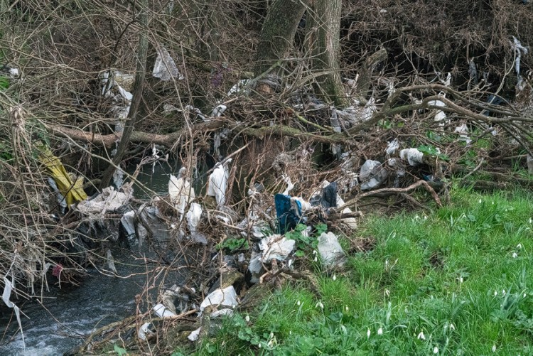 A stream, typically clogged with plastic rubbish, Turkish Thrace.