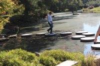 Wednesday Inspiration: Stepping Stones as a Bridge ...
