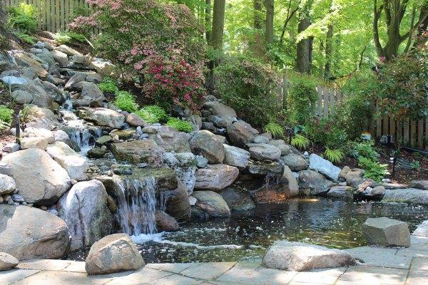 pools & ponds - revolutionary gardens