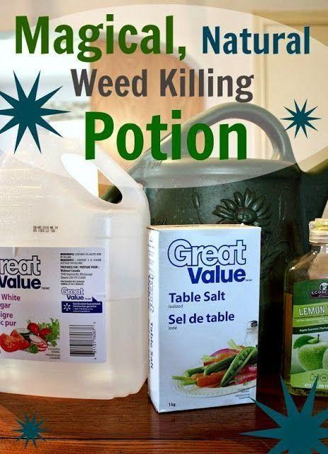 Recipe Vinegar Weed Killer Salt
