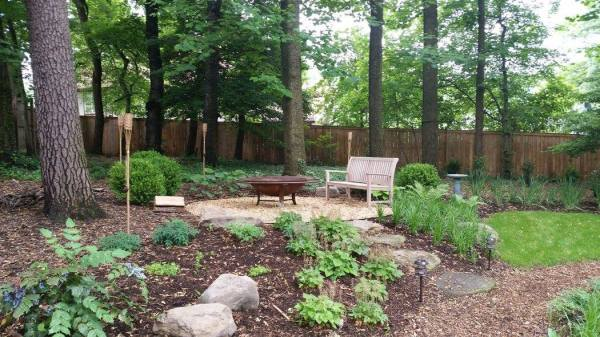 landscaping wooded lot - revolutionary