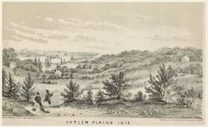Harlem Plains 1814