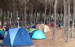 Servizi a disposizione - Revolution Camp 2015