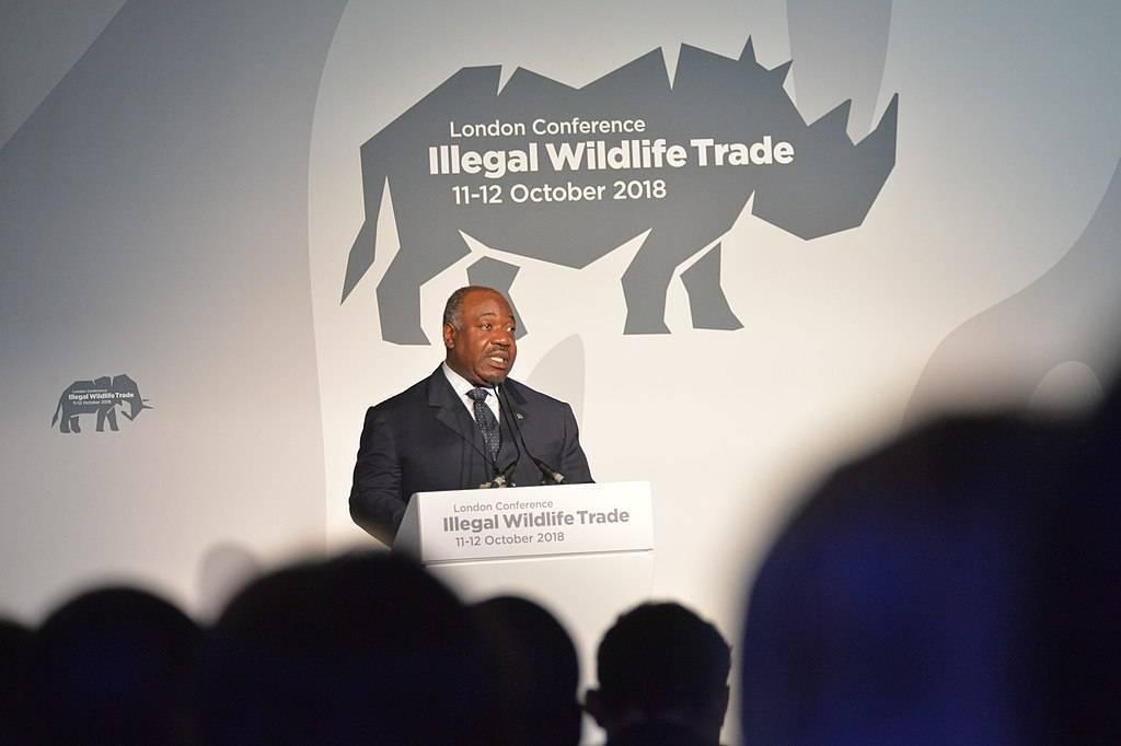 Le Gabon : une stabilité réelle mais fragile