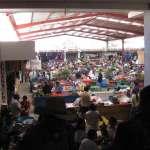 (6) New Market