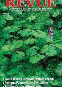 Cover: Jungle green by Thor Janson