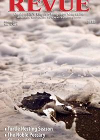 Landfall photo by Henning Sac Morales