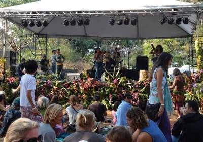 Festival performers: Naik Madera