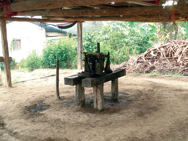 Sugar Mills Guatemala