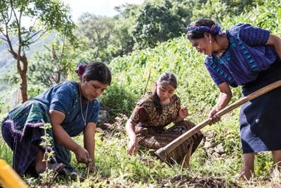 Community Garden Guatemala