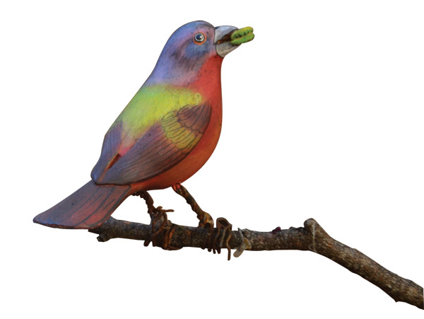 Bird Art Museum